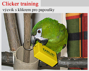 Clicker training s papou�ky